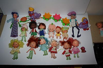 7Lot of 17 Vintage Strawberry Shortcake Dolls & Berry Busy Bug 1979 Kenner