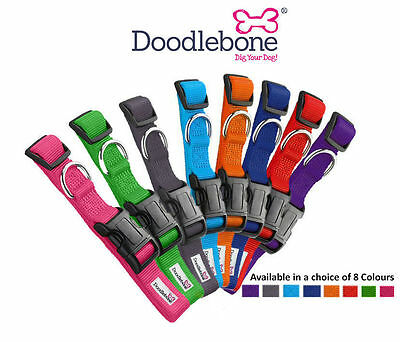 Doodlebone Bold Plain Nylon Dog Collars - Choice of Colours & Sizes