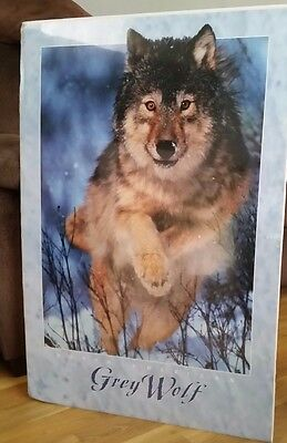 Lot of 3 24 x 36  Wolf Posters *NEW SEALED*