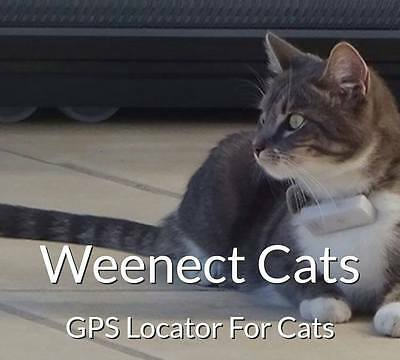 WEENECT cat tracker pour chats