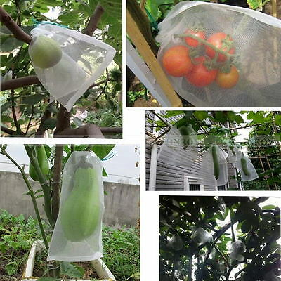 5 Sizes Protect Mesh Bag Plant Fruit Vegetables Protection Filter Nylon Bags