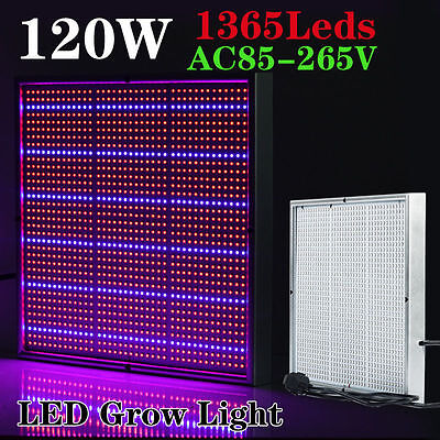 AU 120W 1365 LED Blue Red Lamp Full Spectrum Plant Hydroponic Grow Light Panel