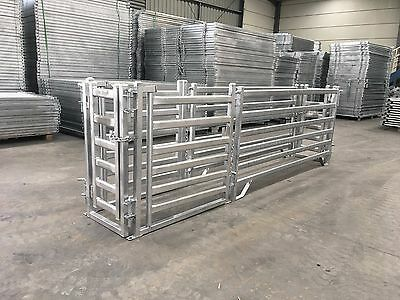 3m Sheep Panel Sheep Draft Race Galvanized Steel