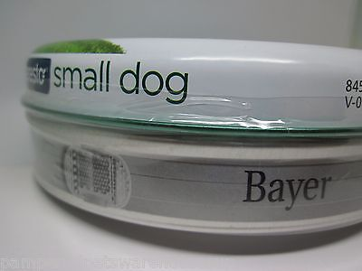 Flea Collar Small Dog, 1 collar