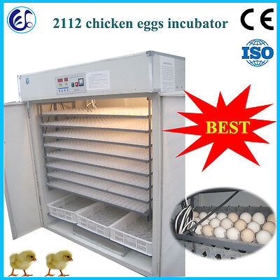 Automatic chicken/goose/duck egg incubator 2112 pcs SEA CUSTOM PICKING