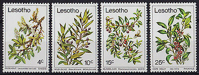 LESOTHO : 1979, Trees (Complete set of 4, MNH)