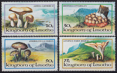 LESOTHO : 1983, Fungi (Complete set of 4, MNH)