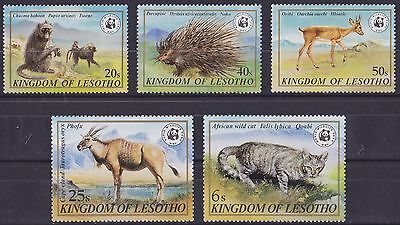 LESOTHO : 1981, Wildlife WWF (Complete set of 5, MNH)