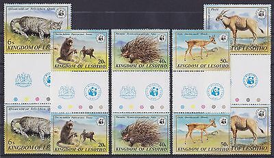 LESOTHO : 1981, Wildlife WWF (Complete set, Gutter Pairs, MNH)