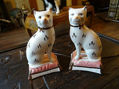 vintage pair of staffordshire cats on cushions