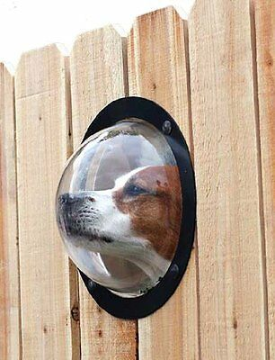 Dog Cat Clear Wood Fence Pet Peek Window Animals Alleviate Curiosity