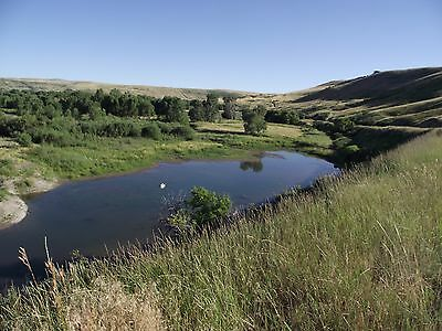 40 acres near Eden  Montana