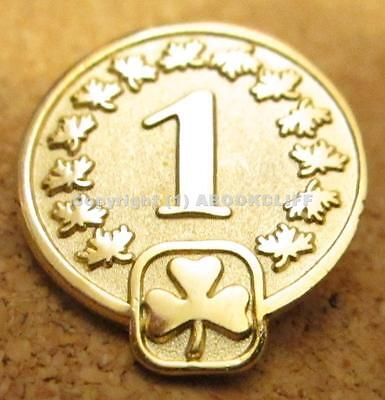 GIRL GUIDES CANADA 1 year DISCONTINUED Pin Near Mint