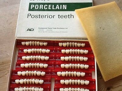 Real Porcelain Vintage Boxed Posterior Teeth For Making Dentures