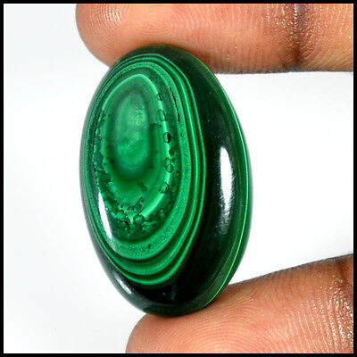 39.35 Cts NATURAL DESIGNER  MALACHITE OVAL CABOCHON LOOSE GEMSTONE 28-37