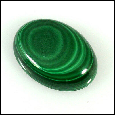 GREEN MALACHITE CABOCHON 27.98Cts SUPERB QUALITY  OVAL LOOSE GEMSTONES 33-29