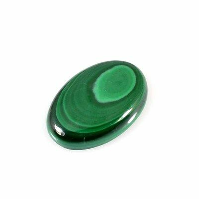 44.77Cts  100% Natural Designer Malachite Oval Cabochon Loose Gemstone 36-67