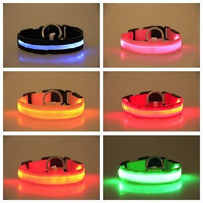 COLLIER POUR CHIEN A LED LUMINEUX ROUGE Taille: M
