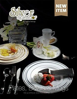 300 piece Plastic China Plate and Silverware Combo for 60 people WHITE w/ Silver