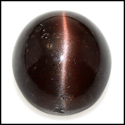 23.95Cts NATURAL A+ QUALITY SCAPOLITE CAT'S EYE OVAL CABOCHON GEMSTONES 109-28
