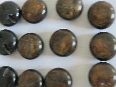 12  NEW VINTAGE BROWN  TIGERS EYE buttons ,  (shank) 23mm, sewing, Craft Jacket