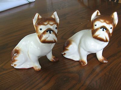 """Vintage Boxer Dog China Figurine Pair  6 x 6"""" Unmarked Appealing Face Excellent"""