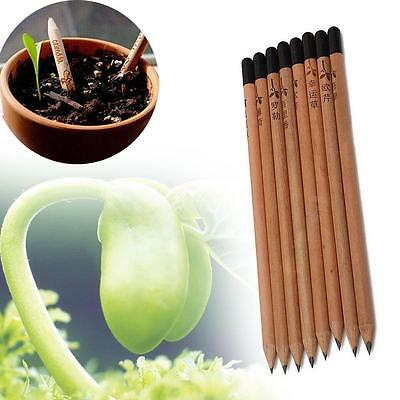 8 Pieces Sprouting Bud Sprout Pencil Planting Herb Basil Tomato Green Pepper DB