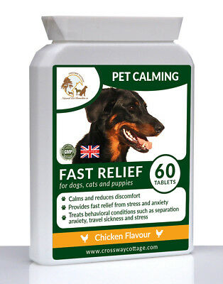 Natural Pet Calming Remedy & Treatment for Stress, Anxiety & Hyperactivity