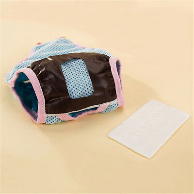Female Dog Puppy Pet Diaper Pants Pad Physiological Sanitary Short Panty