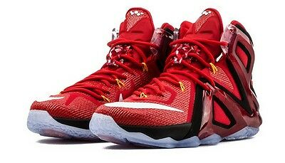 Nike Lebron XII Elite Basketball Trainers - UK 7, EUR 41 ( 724559 618 )