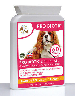 5 Strain Natural Probiotic For Dogs & Puppies. Healthy Floral Balance 60 Tablet