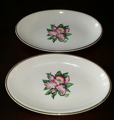 "Lot of 2 - Paden City Pottery MODERN ORCHID Vegetable Plates 6"" x 9"" Oval"
