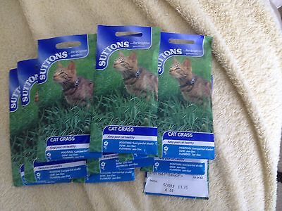 Suttons Pet Grass For Indoor Cats  Only £4 For 8 Packets, Free Delivery Included