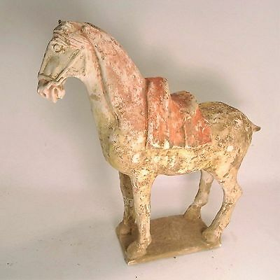 Chinese Sui Dynasty (581-618)  painted terracotta horse  31 cm length