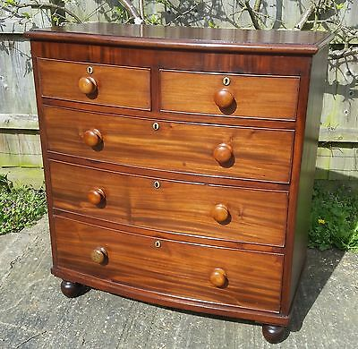 19th Century Mahogany Bow Fronted Chest Of Drawers 2 Short over 3 Long