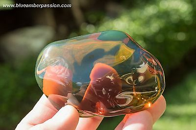 Dominican Amber Nugget 124.9g Museum Quality Crystal Clear Crack Free Bluish