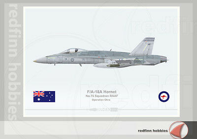 Warhead Illustrated F/A-18A Hornet RAAF 75Sqn operation Okra Aircraft Print