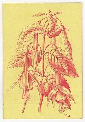 Playing Cards Single Swap Old Antique JAMES ENGLISH Square Corner CORN FLOWER 1