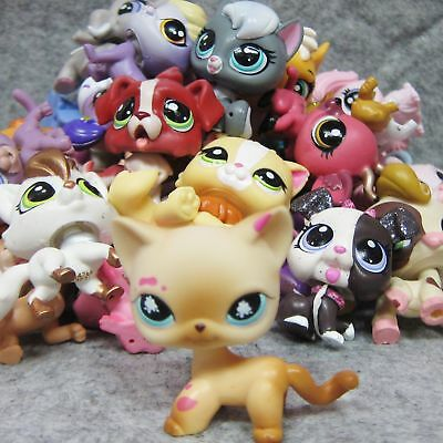 6x Littlest Pet Shop Animal Collection LPS Figure Loose #816 +Cat Dog Toy Random