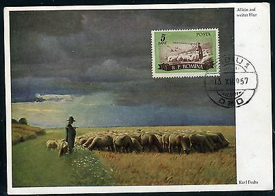 Roumanie - Carte Maximum 1957 - Moutons