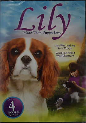 Lily: More Than Puppy Love plus 4 Bonus Movies (DVD, 2015, Widescreen) *NEW*