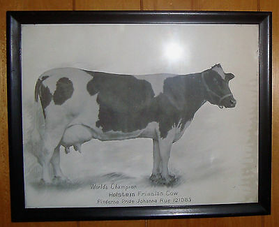 Antique Print Holstein Friesian Worlds Champion Cow Finderne Pride Johanna Rue