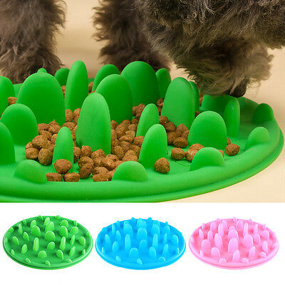 Gamelle Bol Antidérapant Anti Glouton Silicone Chien Chat Lente Alimentation