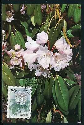 Chine - Carte Maximum 1991 - Fleur