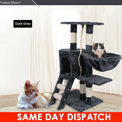 Kitten Cat Tree Scratching Post Activity Centre Bed Toy Scratcher Super Funny UK
