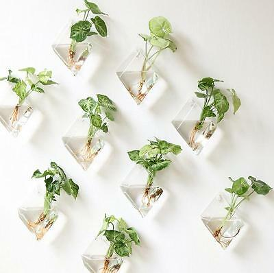Pack of 2 Glass Diamonds Hanging Planter Glass Air Plant Pots Plant Containers