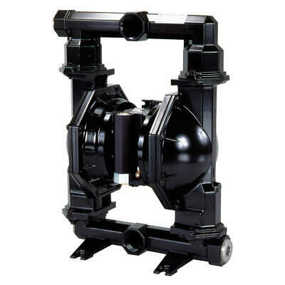 ARO Diaphragm Pump,Air Operated,Cast-Iron, PD20A-ACP-AAA-B
