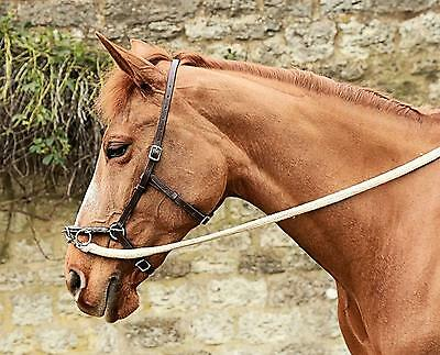 In-hand schooling pack B - French baroque lunge cavesson and leather reins