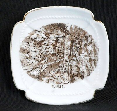Antique THE FLUME NH NEW HAMPSHIRE SOUVENIR DISH Hand Painted Porcelain Germany