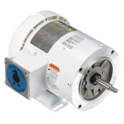 LEESON Washdown Motor,3 HP,Face,CWLE,3-Phase, 119462.00